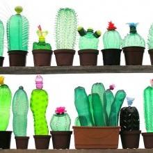 diy recyclage créatif Cactus Bouteilles plastique