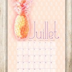 diy-printable-calendrier-juillet