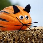 diy-deco-citrouille-halloween