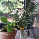diy-vase-pimpe-Creamalice